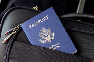 Passport for Export Shipments 2